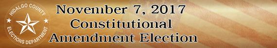 November 7 Constitutional Election Banner webpage